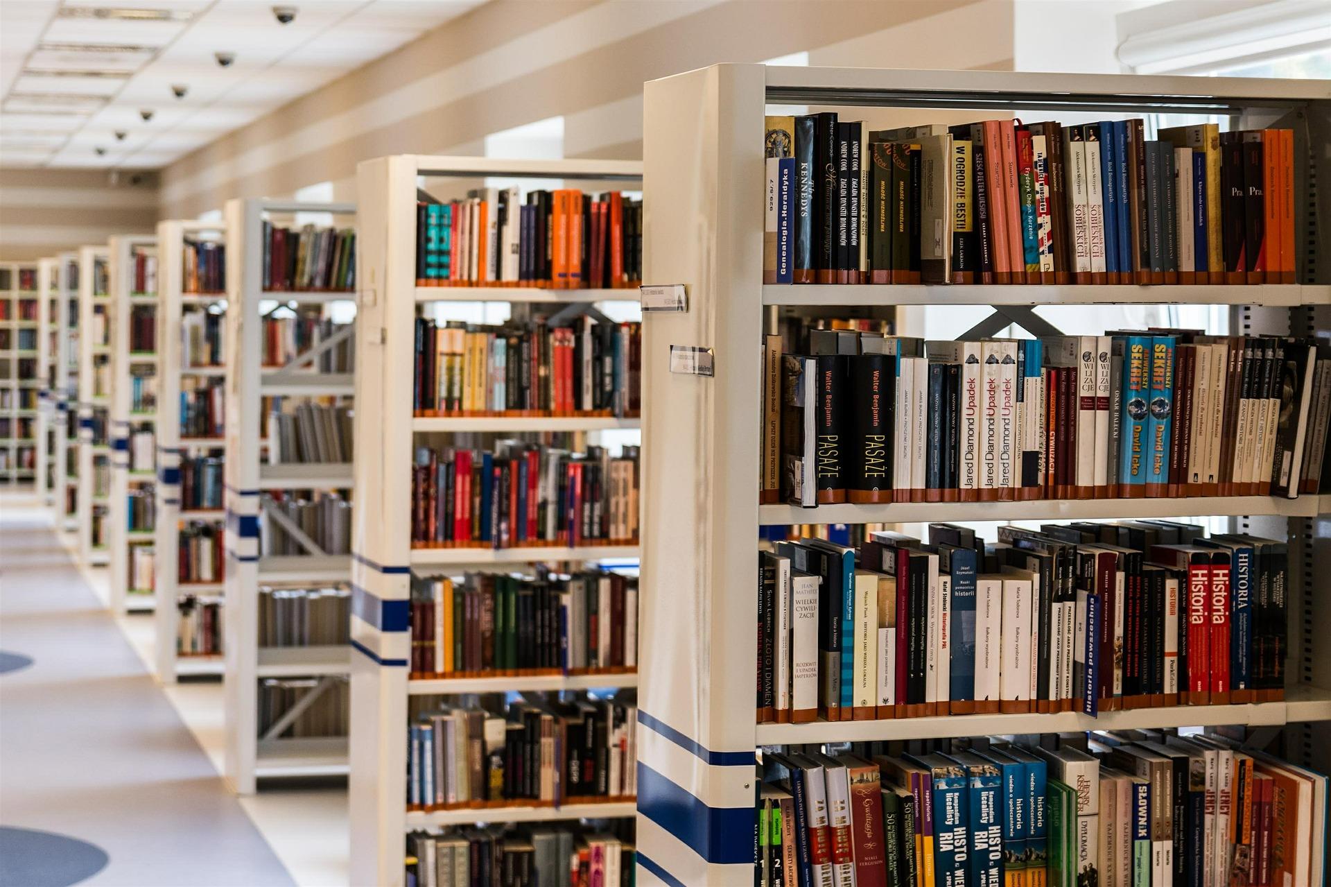Nouveautés bibliothèque